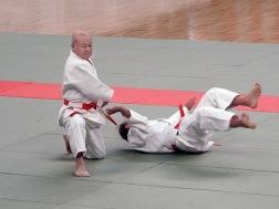 Япония, 27 фестиваль по боевым искусствам, Будокан